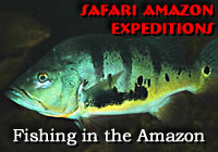 Amazon Expeditions